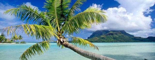 DISCOVER AN ISLAND PARADISE