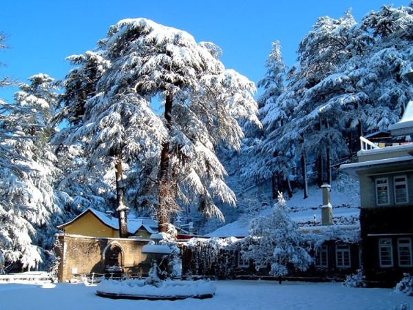 shimla-hoenymoon-detination-in-india