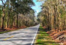Exploring South Carolina