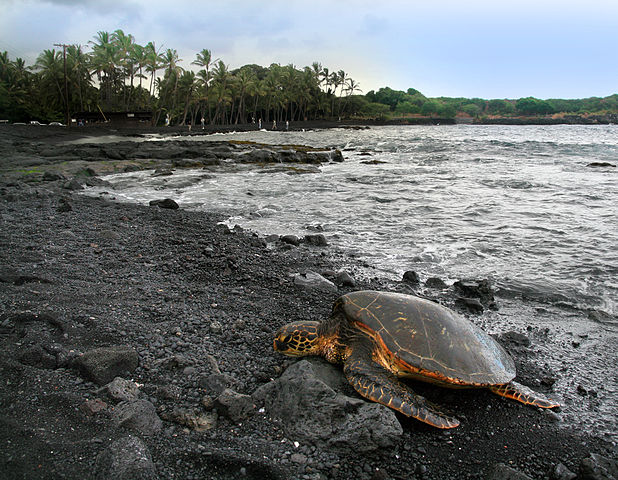 top 10 things to do on the big island